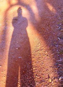 DAY 355 23.01.2013 elizabeth martin